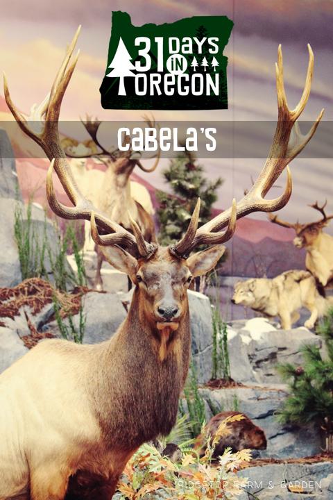Cabelas - title