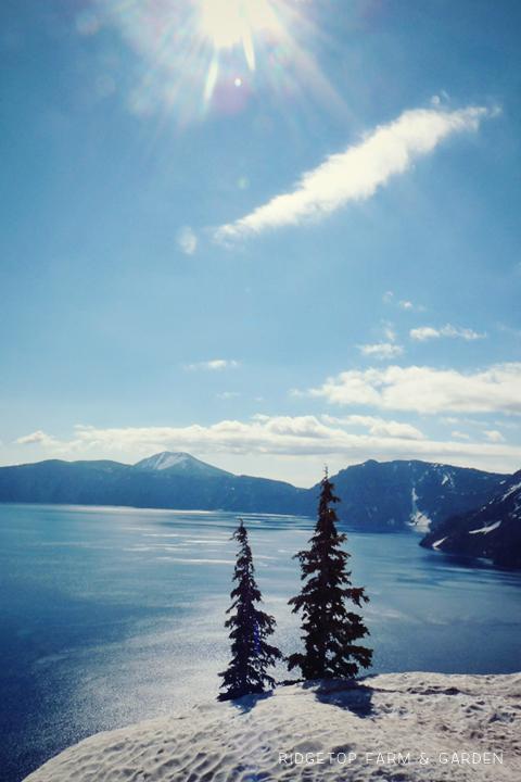 Ridgetop Farm and Garden | 31 Days in Oregon | Crater Lake