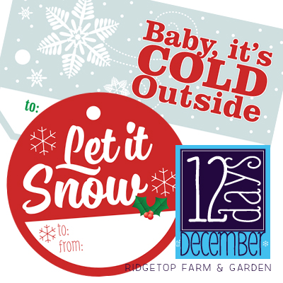 12 Days: Let it Snow Gift Tags Printable
