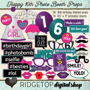 Ridgetop Digital Shop | Photo Booth Props | 16th Birthday | Girl | Pink | Purple | Teal