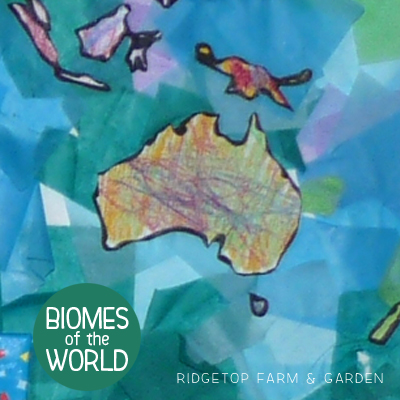 Biomes of the World: Coral Reef