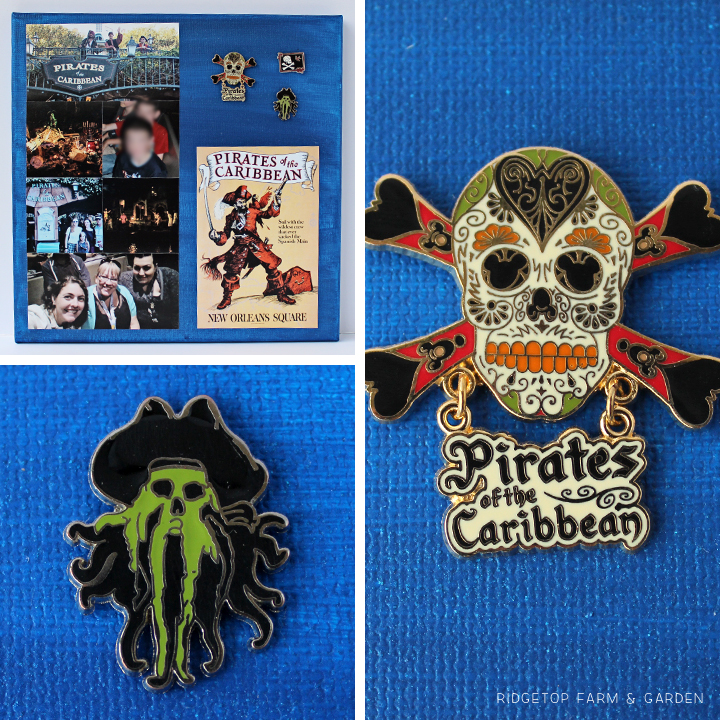 Ridgetop Farm and Garden | Disney | Pin and Photo Display Canvas | Pirates of the Caribbean