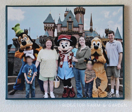 Ridgetop Farm and Garden | Disney Gallery Wall | Castle and Character Canvas