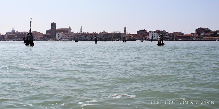 Ridgetop Farm and Garden   2015 European Vacation   Venice   Murano Island