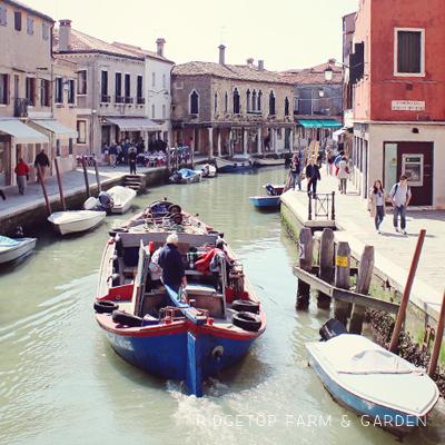 Exploring Venice: Murano Island