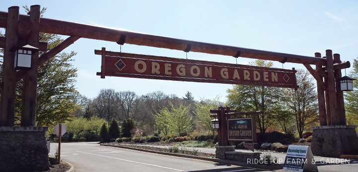 Ridgetop Farm and Garden | Oregon Garden
