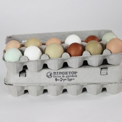 RFG - dozen fresh eggs2