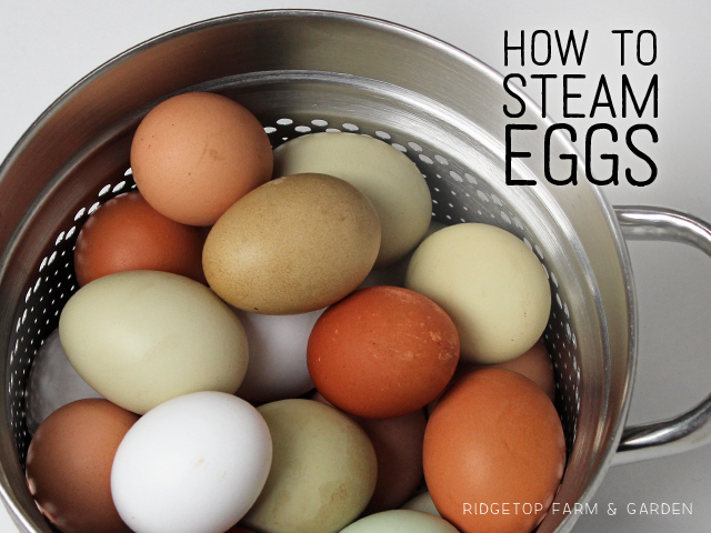 Ridgetop Farm and Garden | Recipe | Steam Eggs