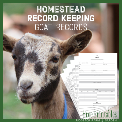 Goat Records – Free Printables