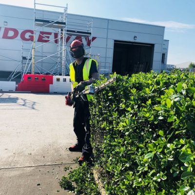 NIKKARI NTA26N Long Reach Hedge Trimmer