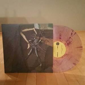 Danava---Hemisphere-PurpzClear-Vinyl