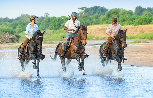 cantering through water