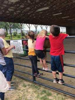 kids hanging on arena fence