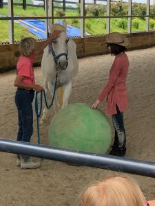 horse and two riders with large ball