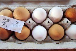 Mace Chasm Farm Eggs