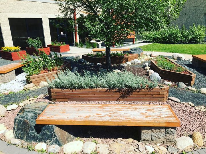 The beautiful Medicine Gardens at Health Sciences Centre in Winnipeg. One character in our show is an Ojibwe medicine woman who uses the four sacred plants- sage, sweet grass, cedar and tobacco- to save a life. Many thanks to Debra Beach-Ducharme for her assistance and wisdom.