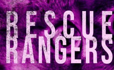 Rescue Rangers Banner