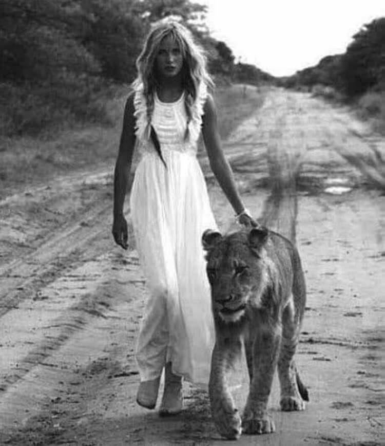 The lioness does not try to be the lion.