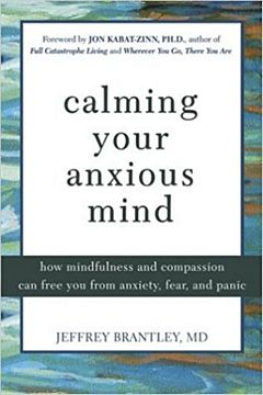 'Calming Your Anxious Mind' by Jeffrey Brantley (ISBN 1572244879)