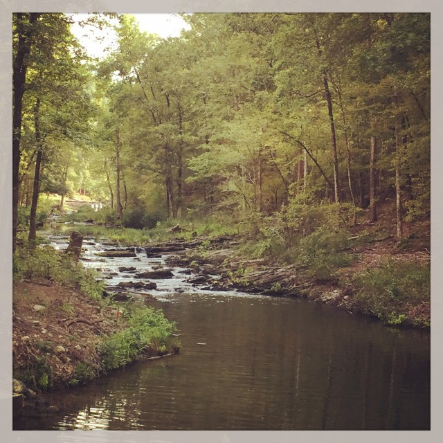 Charlton Creek