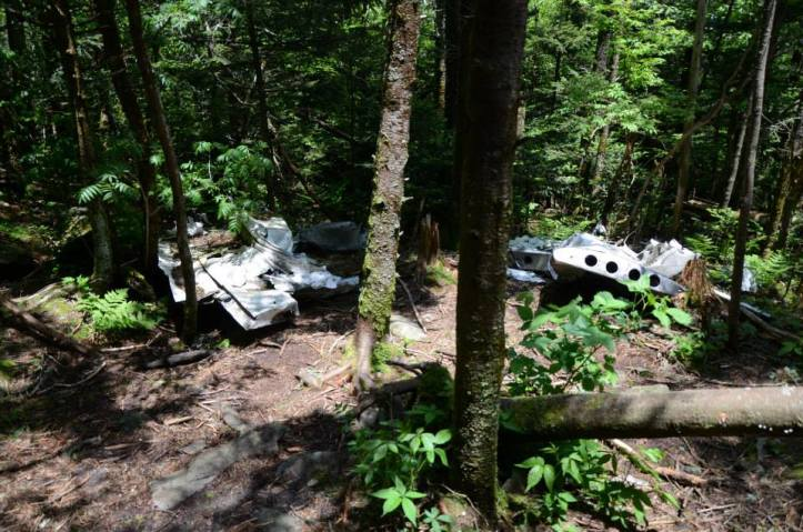 Some of the plane wreckage