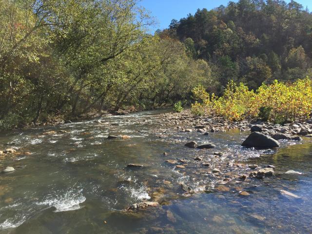 The Little Missouri River at Albert Pike Recreation Area.