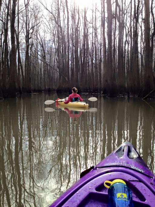 Kayaking Bayou DeView Water Trail