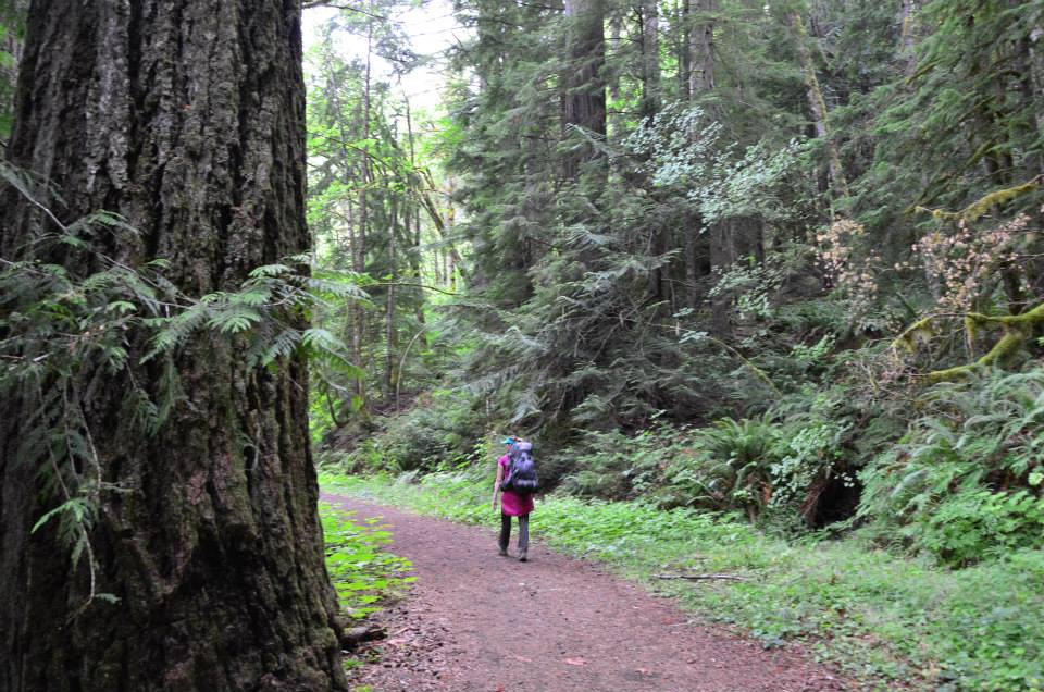 Hiking the West Fork Dosewallips River Trail in Olympic National Park.