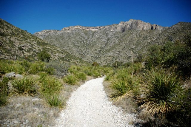 Guadalupe Mountains National Park may be one of the smaller national parks, but it has much to offer.