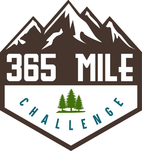 Looking for a New Years resolution that you will keep, try doing working toward small goals. Participate in the 365 Challenge with me, and see what happens.
