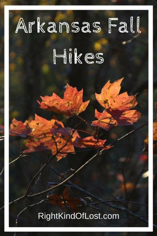 Three amazing Arkansas fall hikes, and a few other suggestions thrown in.