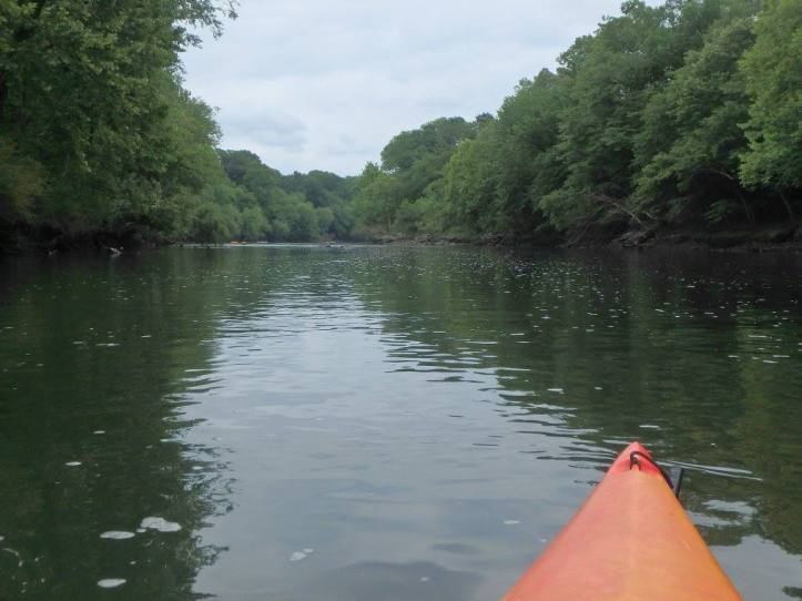 Remmel to Rockport in southwest Arkansas is a great float for a beginner kayakers. The float is dam controlled to ensure a good float even through the dry summer months.