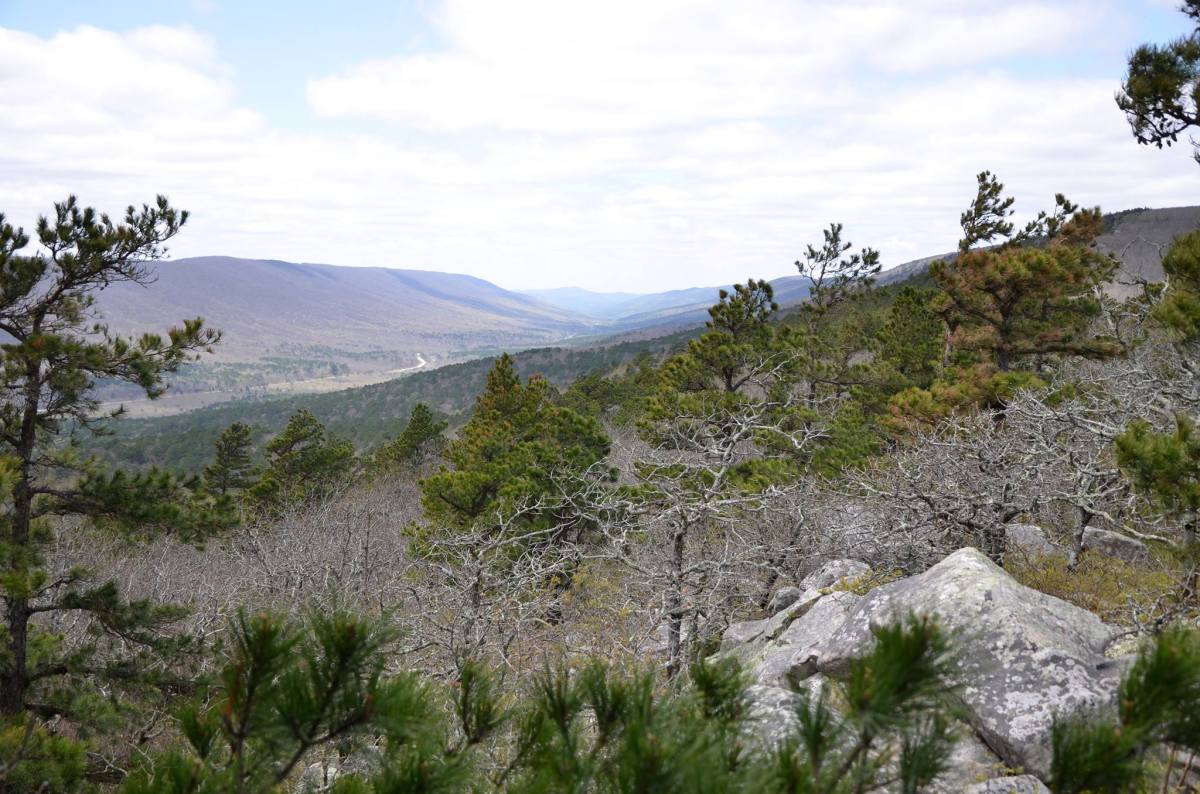 Black Fork Mountain Trail in southwest Arkansas, near the Oklahoma border, is a great long day hike or overnight backpacking trip for those who want to escape the crouds.
