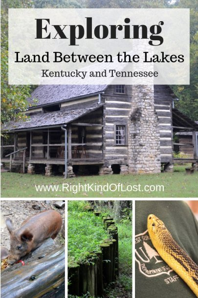 Land Between the Lakes, a National Recreation Area in Kentucky and Tennessee rich with history and natural beauty is a wonderful place for outdoor lovers.