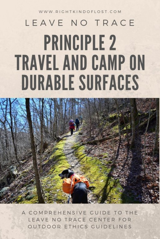 Leave No Trace Principle 2 – Travel and Camp on Durable Surfaces helps prevent impact by protecting the vegetation and soil from trampling.