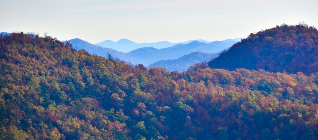 Buckeye Mountain Trail provides the best views in the Ouachita Mountains