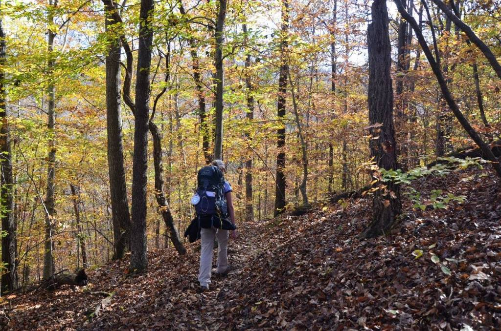 A woman hikes along in the forest
