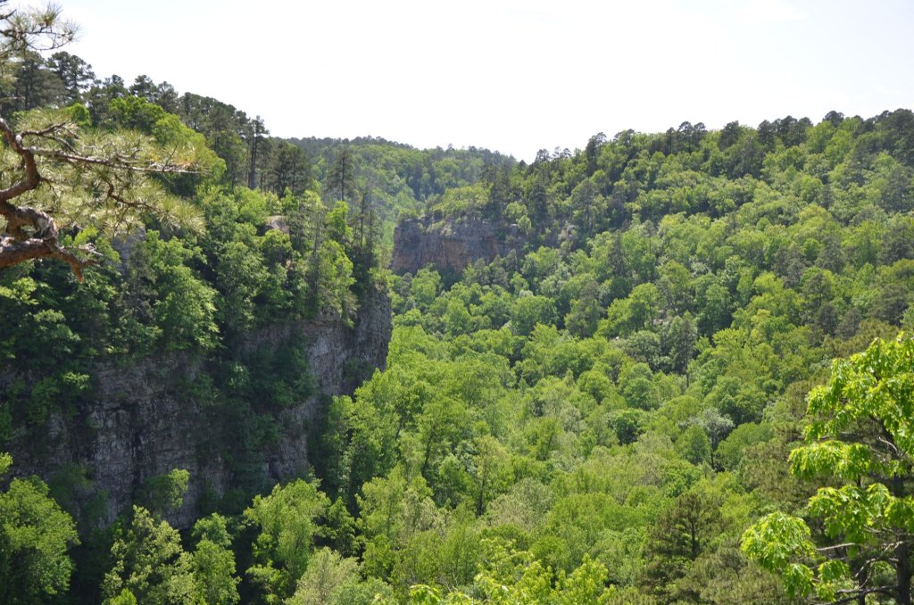 The view of the canyon from the Boy Scout Trail