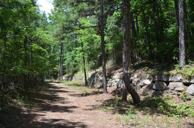 Park of the Boy Scout Trail follows an old road on the Petit Jean Loop Trail