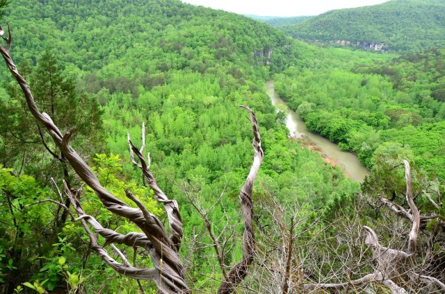 The Buffalo River is shown from Big Bluff along the Goat Trail