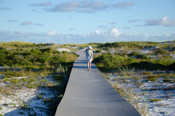 A woman walks along the board walk over the dunes