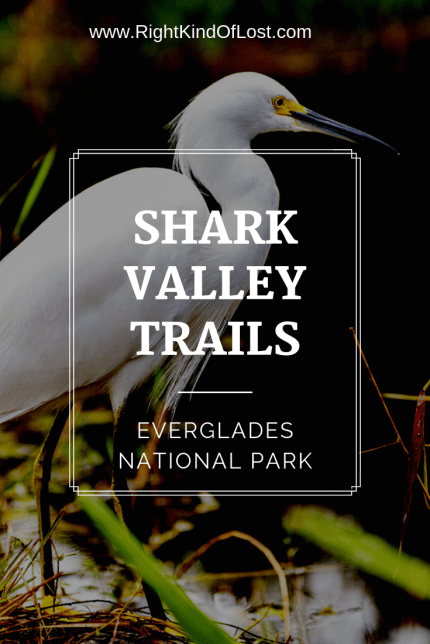 Hiking the Shark Valley Trails is a great way to explore and experience the beauty of Everglades National Park in southern Florida.
