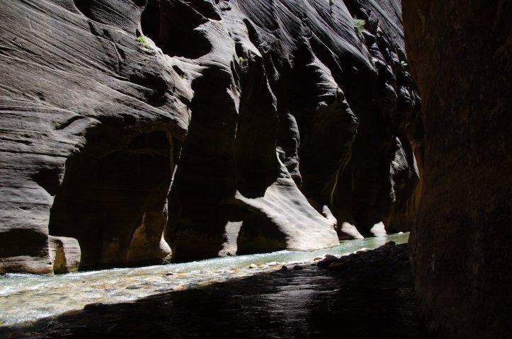 Sun shines illuminating the rock in The Narrows