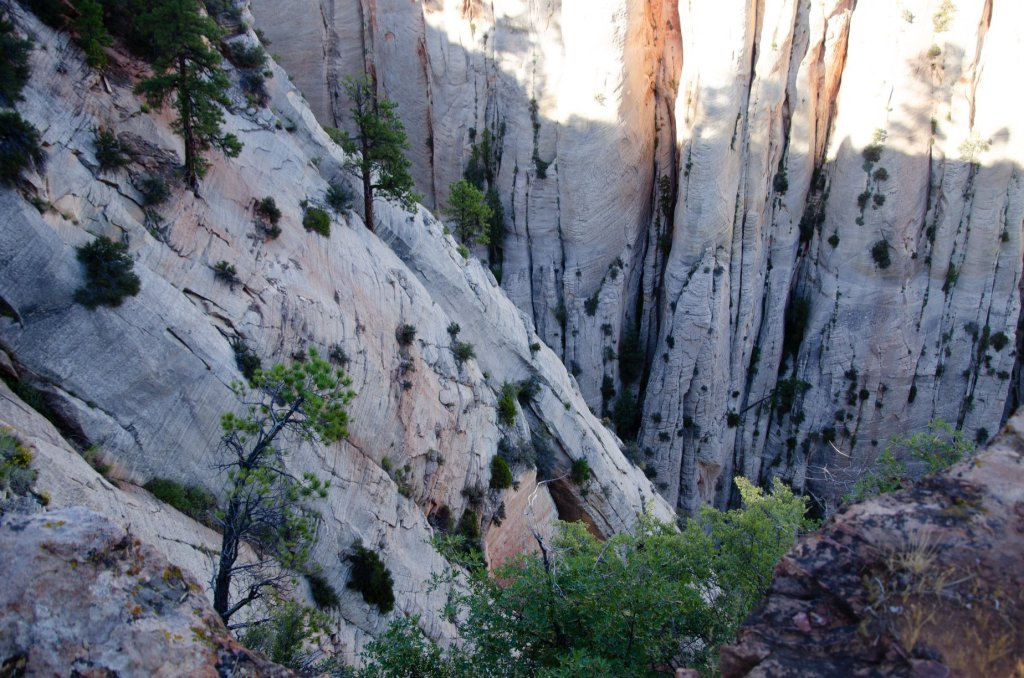 A cliff face is shown at Zion National Park