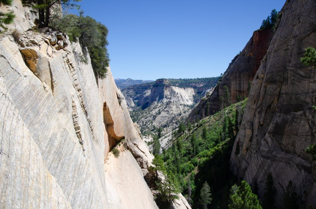 A valley is shown on the west rim trail at zion national park