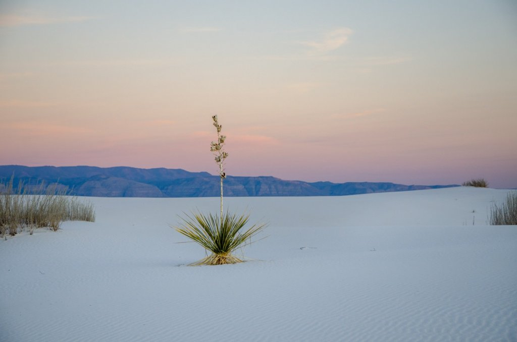 White Sands National Park along my budget travel road trip