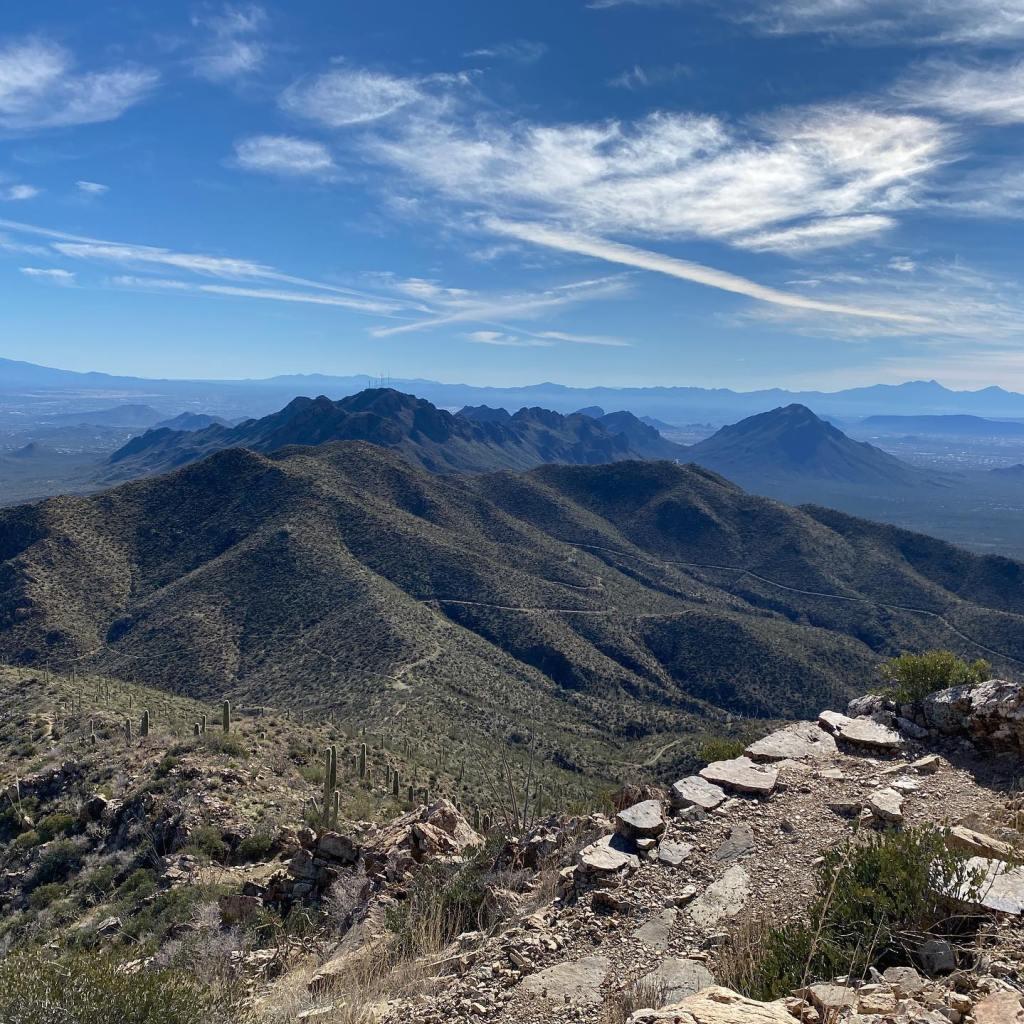 Saguaro National Park along my budget travel road trip