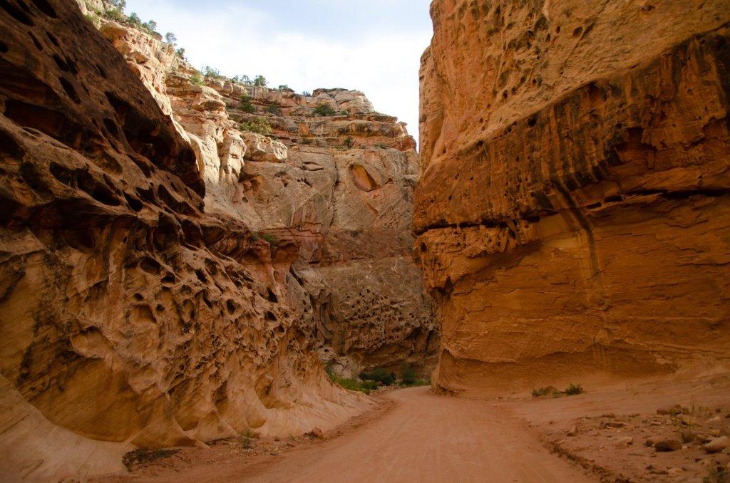 a narrow slot canyon at Capitol Reef National Park