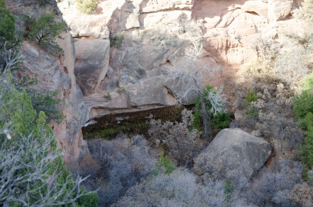 The fern cave is shown from above