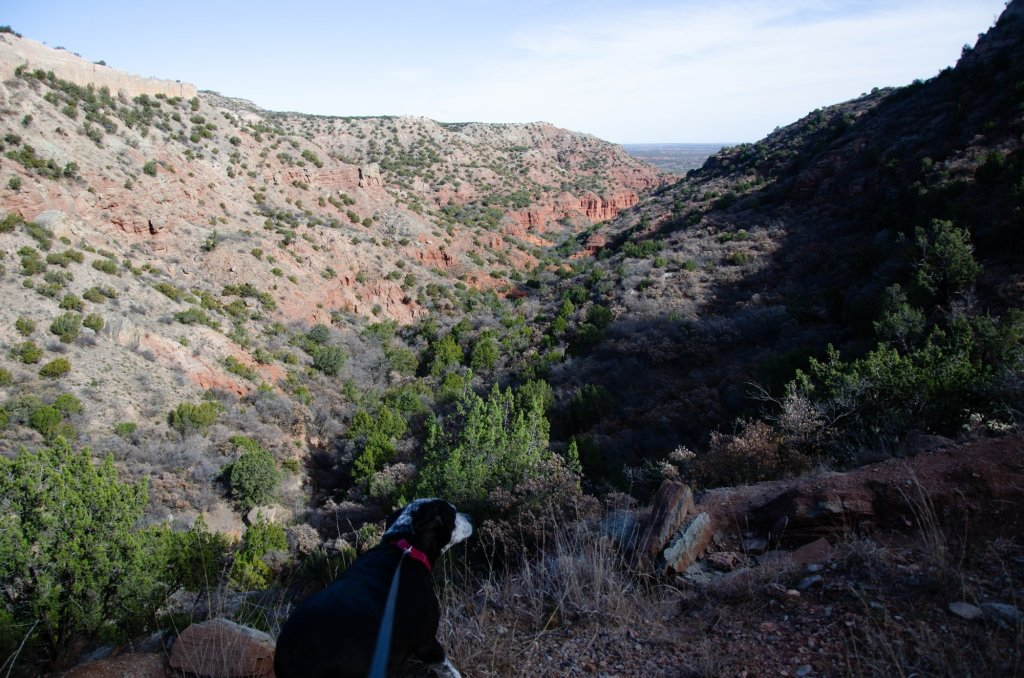 Hiking the loop at Caprock Canyons State Park